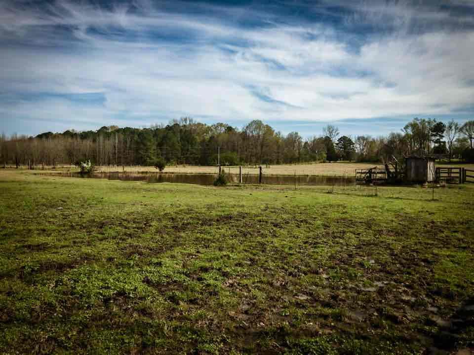 The Farm | Mark Mulkerin Photography