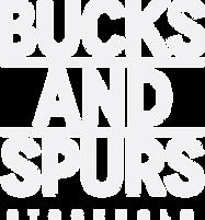 B&S_Logo_Vit.png