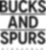 B&S_Logo_SV.jpg