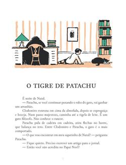 O_Pequeno_Patachu_Página_09