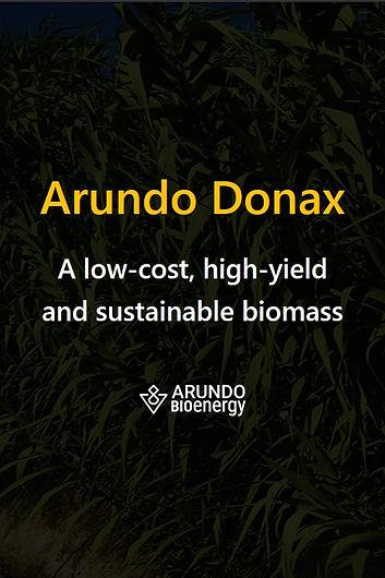 Arundo Donax Cover portrait.jpg