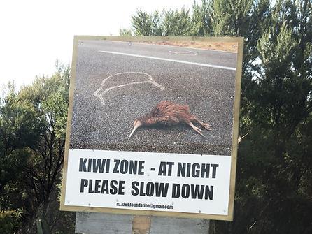 Kiwi Zone sign.JPG
