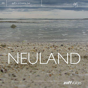NEULAND.jpg