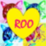 ROO PROFILE.jpg