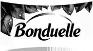 logo-bomduelle.png