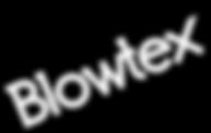 logo-blowtwx.png