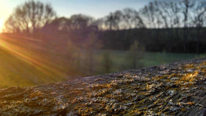 Mühlleite südlich von Köthnitz