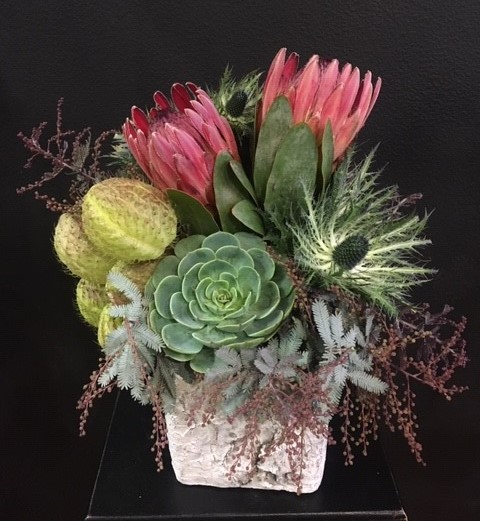 Protea and succulents