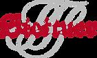 Stettner Logo.png