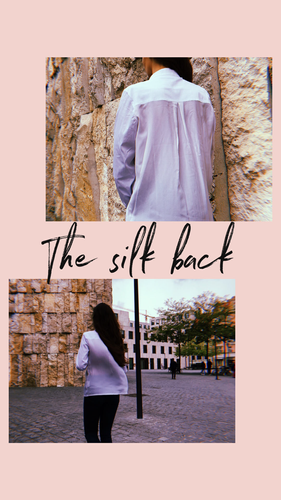 the silk back.png