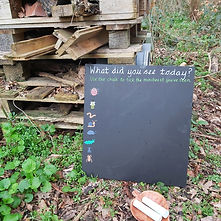 Forest School Bug Board.jpg