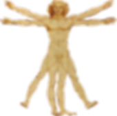 Portale_Leonardo_da_Vinci.png