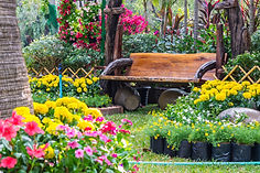 Gardening ideas from English Garden and Antiques