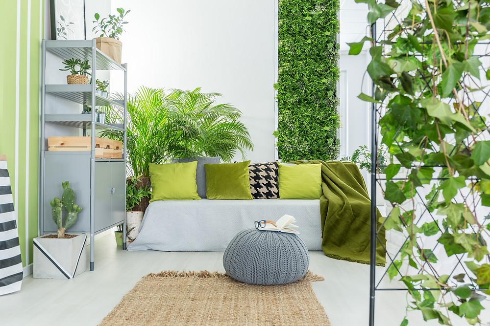 Apartment Gardening, Oasis, affectmag
