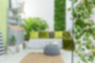 Apartment Gardening, oasis, rooms