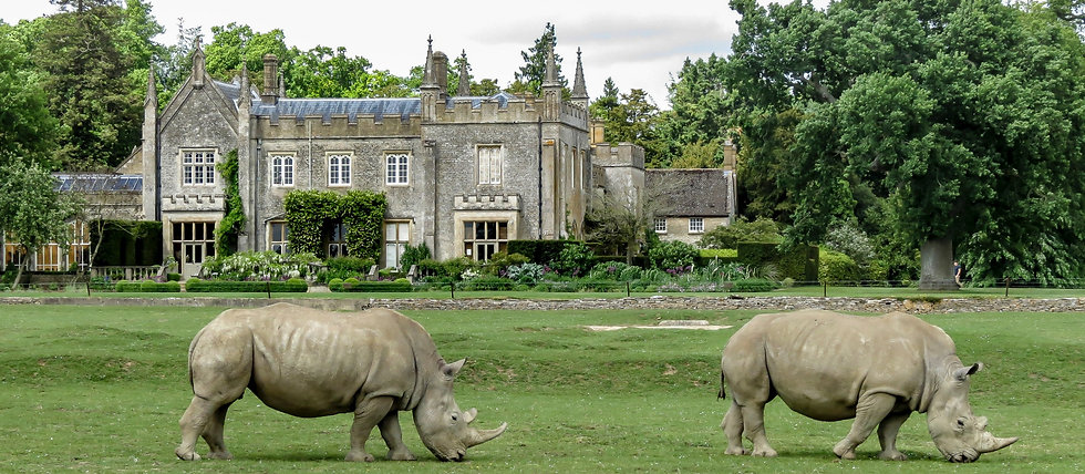 Cotswold Wildlife Park & Gardens, Where to visit from English Garden & Antiques