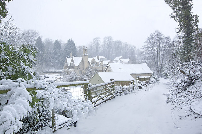 A snowy winter scene with falling snow f