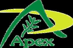 APEX  PNG LOGO.png