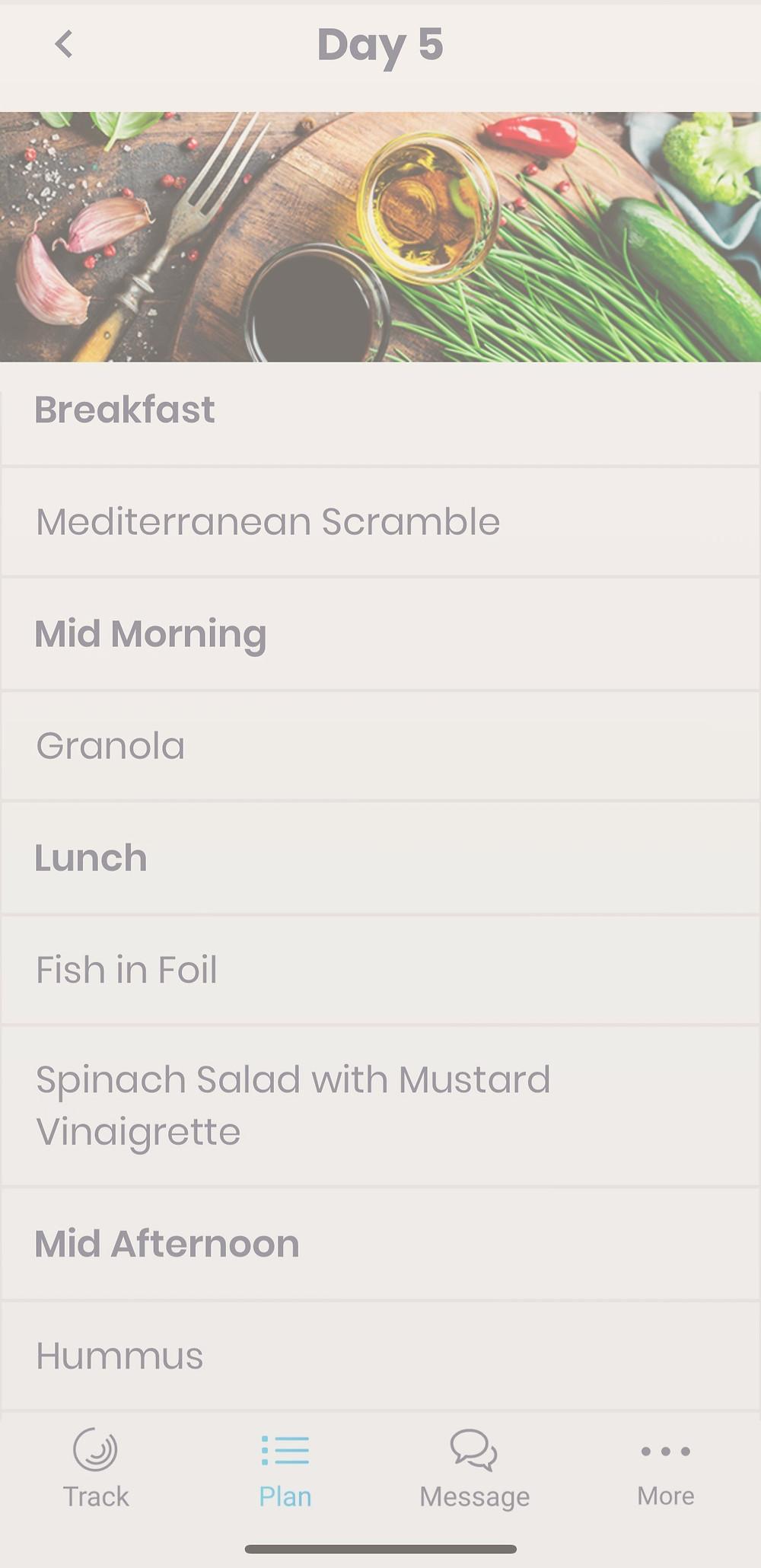 Holistic Health Meal Plan