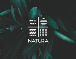 Natura Brand Identity-01