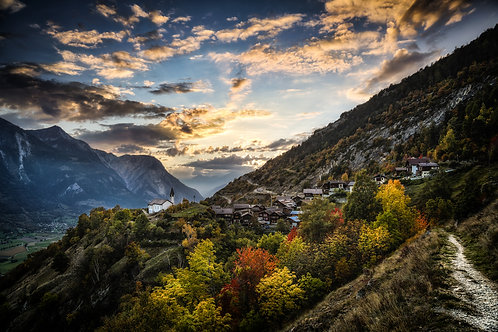 Bratsch Herbst