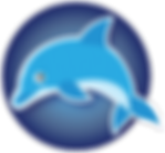 SNSdolphin_t.png