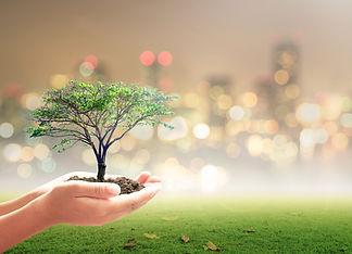 World environment day concept_ Human han