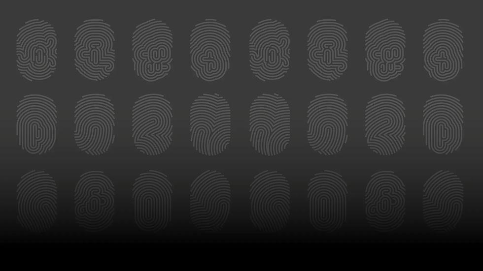 TOPPBILDmedtoning_fingerprints.webp