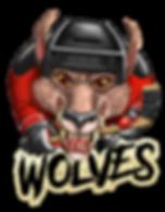 Wolves Hockey Team
