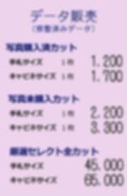 データ価格.jpg