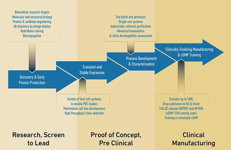 BIOL - infographics.png
