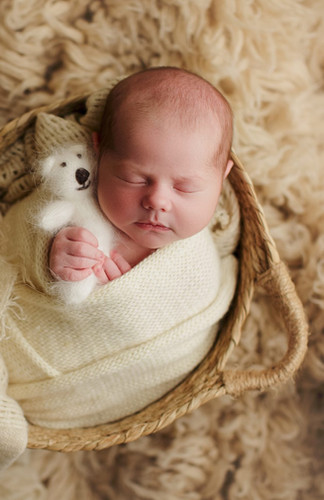 Newborn photographer in houston