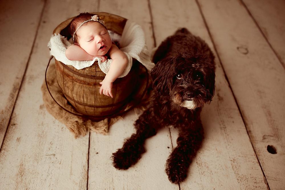 Newborn Photographer in Sugar Land, TX