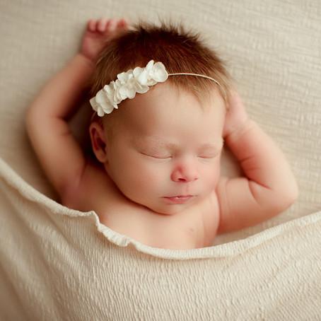 Evie | Houston, TX Newborn Portraits Session