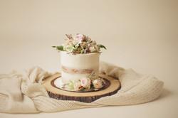 houston cake smash photography