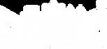 GMSVN-logoblack.png