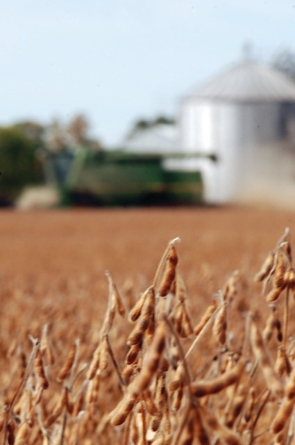 Measuring the Economic Contribution of Agriculture in Ohio: An Educational and Informative Workshop