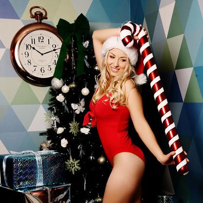 Chique Christmas SHEF.jpg