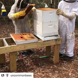 THIS SUNDAY!! _karbachbrewing #earthday #market  be sure to stop by _uncommonbees and try their #inf