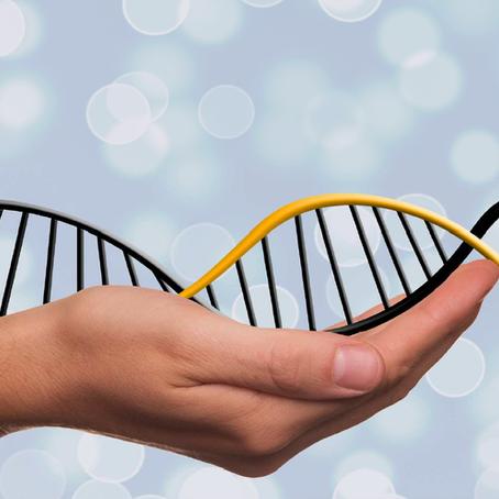 Comment LE STRESS Influence notre ADN, pourquoi LA KINÉSIOLOGIE peut vous aider.