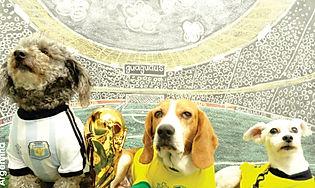 Equipo mundial guaguaus.jpg