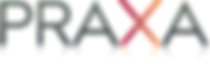 Praxa Business Intelligence, BI Scotland
