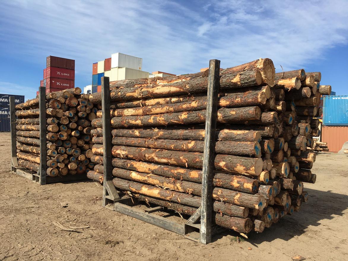 BRIS Log Exports.jpg
