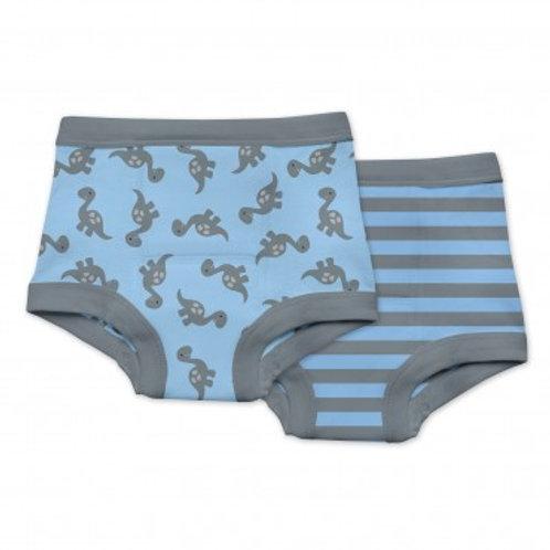 Reusable Absorbent Training Underwear- BOY (2 pack)