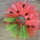 Thumbnail: Watermelon Tutu with embroidered seeds