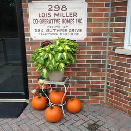 298 Pumpkins.JPG