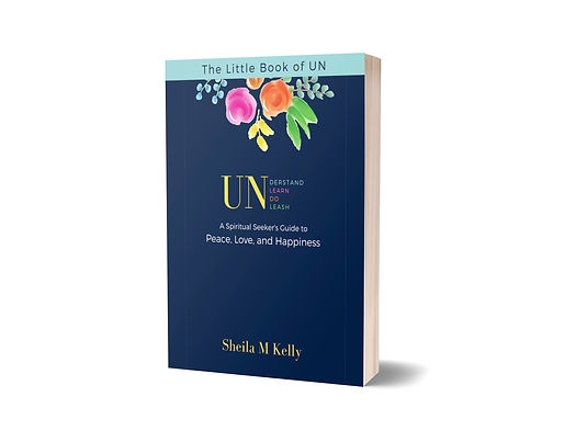 book cover - little book of un 3D.jpg