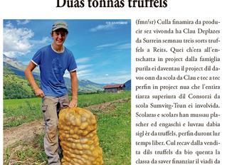 """Truffels cultivai sez gustan aunc meglier"""