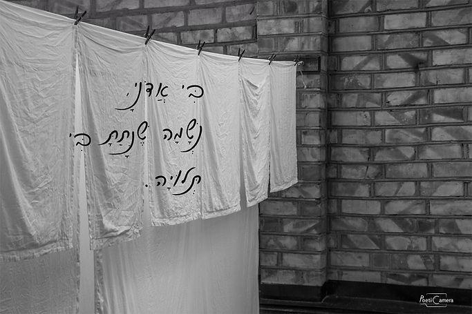 כביסה עברית.jpg