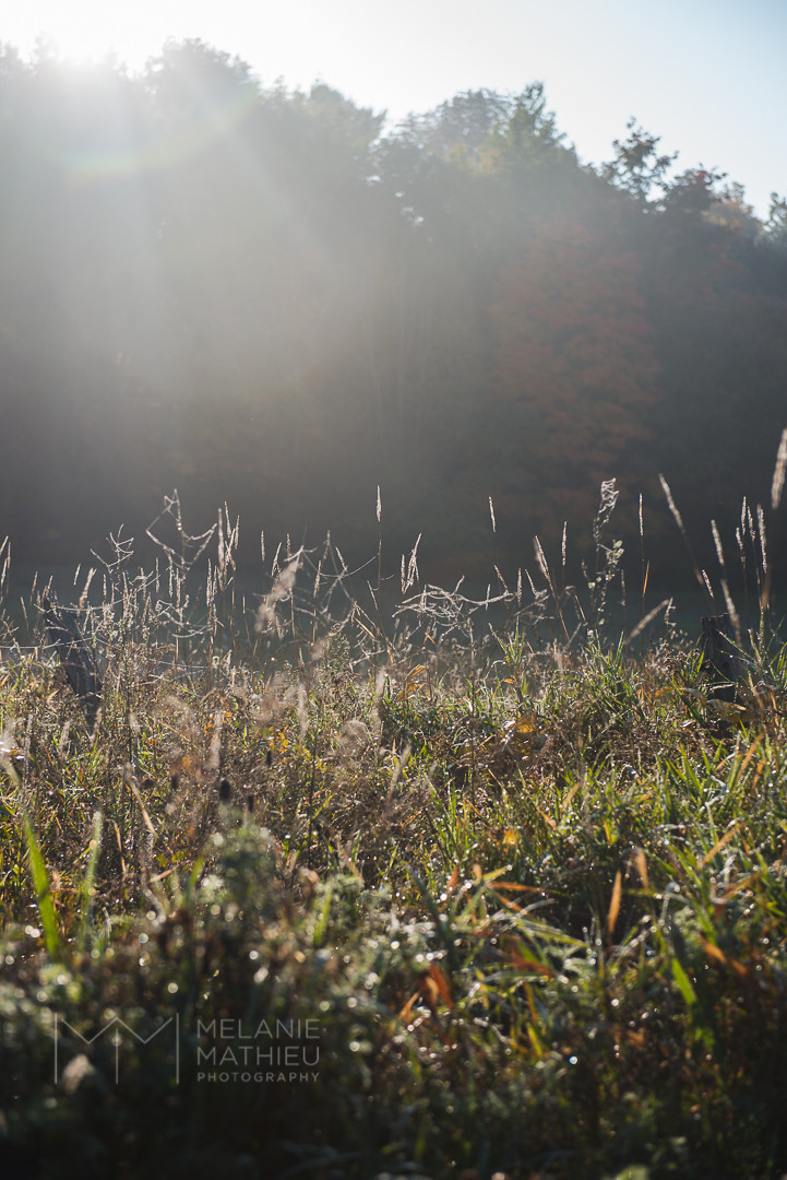 Landscape scenery, L'Ange Gardien, QC